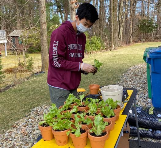Matthew's project Quarangreen is helping his community feel more connected, inspired and healthy during the COVID-19 pandemic.