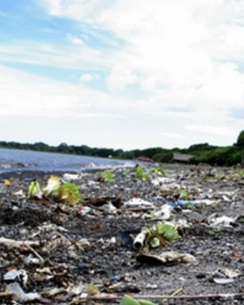 This photo shows only a minuscule amount of garbage that can be found in rivers and lakes